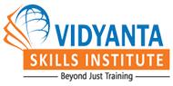 Vidyanta skill institute